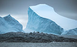 Wide-angle shooting of a group of penguins on stones surrounded by icebergs and water. Andreev.