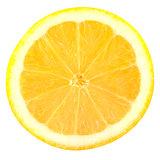 Slice lemon fruits isolated on white background