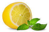 Half lemon and sprig of mint