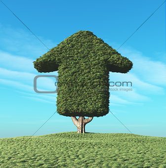 A green tree in the shape of an arrow