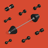 Flat design elements for gym and fitness in 3D, vector illustration.