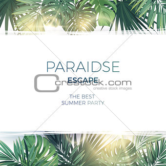 Green summer tropical background with exotic palm leaves and plants. Vector floral background.