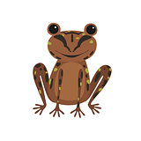 Single frog with brown skin illustration