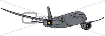 Gray military jet airplane