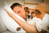 dog and owner sleeping or dreaming together