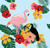 Flamingo and Toucan