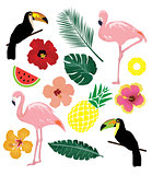 Vector Tropical Elements
