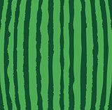 Vector Watermelon Background
