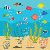 Tropical exotic fishes in aquarium or ocean underwater. Vector illustration of fish tank with colorful sea fishes and algae.