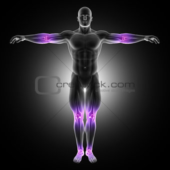 3D male medical figure in standing pose with joints highlighted