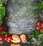 Food background with vegetables