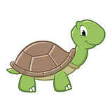 Cartoon Turtle B