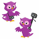 Cartoon Owl Photographer