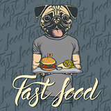 Vector Illustration of pug dog with burger and French fries