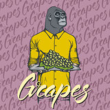 Vector gorilla with grapes illustration