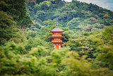 Japanese pagoda in the forest
