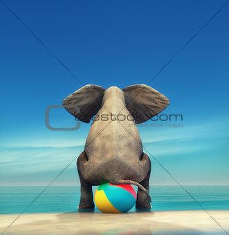 An elephant on a beach ball