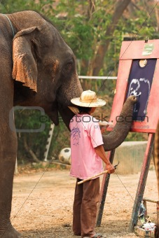Asian elephant painting own image in Thailand