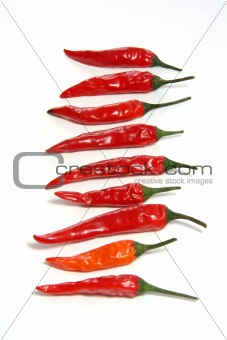 small red hot chilli peppers in row