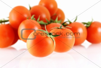 a lot of nice fresh juicy tomatos