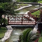 Tropical Garden Bridge