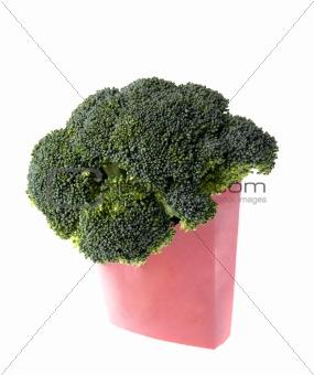 Broccoli Fast Food