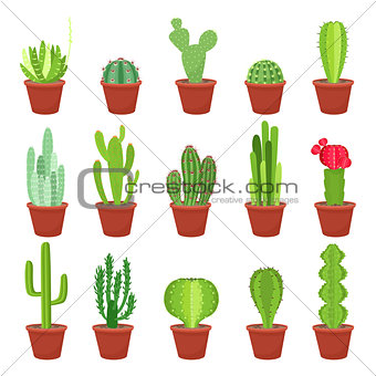 Cactus icons in a flat style on a white background. Home plants cactus in pots and with flowers. A variety of decorative cactus with prickles and without.