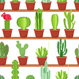 Seamless pattern of flowers pots with cacti and succulents. Vector illustration