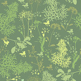 Seamless pattern of  silhouette various herbs.