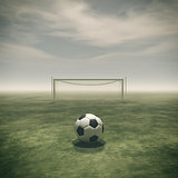Soccer ball on a green grass