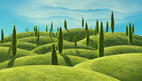 Green cypress trees