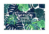 Summer vector tropical postcard design with green monstera palm leaves.