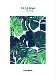 Summer vector tropical design with green monstera palm leaves. Space for text.