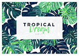 Summer vector tropical design with green monstera palm leaves.