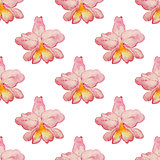Tropical pattern with orchids