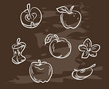 Collection of hand-drawn apple on blackboard. Retro vintage style food design. Vector illustration.