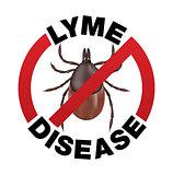 Lyme Disease Tick Bite Icon