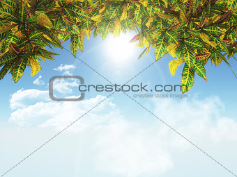 3D leaves on a blue sky background