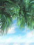 3D palm tree leaves against a blue sky