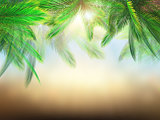 3D palm tree leaves against defocussed background