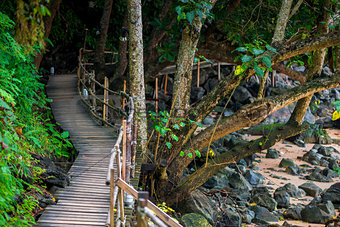 A footpath in tropical places of Thailand, Krabi