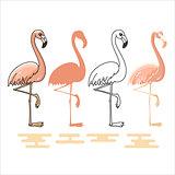 Vector illustration of Flamingo silhouettes set.