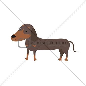 Cartoon Vector Illustration of Cute Purebred Dachshund Dog.