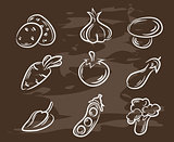 Collection of hand-drawn vegetables.Retro vintage style food design. Vector illustration.