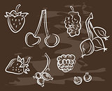 Collection of hand-drawn berryon blackboard. Retro vintage style .