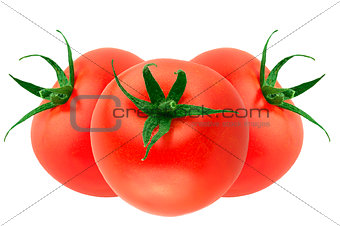 three fresh tomatoes isolated on white