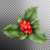 Holly berry leaves Christmas decoration. EPS 10 vector
