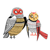 Vector graphics two funny owls