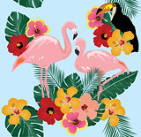 Vector Tropical Birds