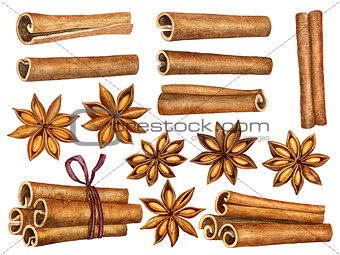 Cinnamon and anise stars set isolated on white background. Kitchen herbs and spices collection. Traditional christmas spices. Watercolor
